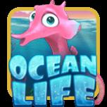 Settle Back for a Taste of the Ocean Life